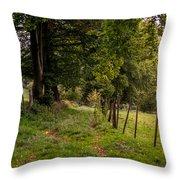 Meadow Grass Path Throw Pillow