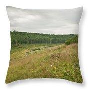 Meadow Green Throw Pillow