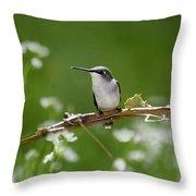 Meadow Hummingbird Throw Pillow