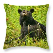 Meadow Itch Bear Throw Pillow
