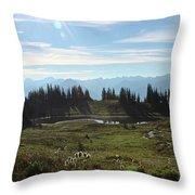 Meadow Mountain View Throw Pillow