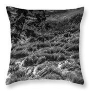 Meadow Of Montaigle Throw Pillow