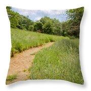 Meadow Path Throw Pillow