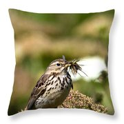 Meadow Pipit With Food Throw Pillow