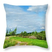 Meadow Road Throw Pillow
