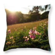 Meadow Sunset Throw Pillow