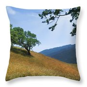 Meadow View Summer Throw Pillow