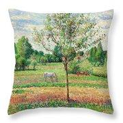 Meadow With Grey Horse, Eragny Throw Pillow