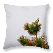 Meadowlark - 1 Throw Pillow