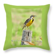 Meadowlark 7 Throw Pillow