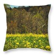 Golden Hay  Throw Pillow