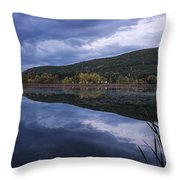 Meadows Dusk Throw Pillow