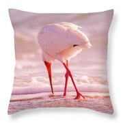 Meandering Beauty Cortez Beach Throw Pillow