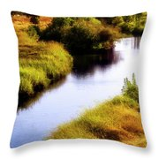 Meandering Channel Throw Pillow
