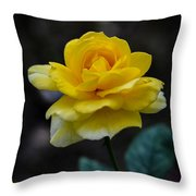 Meanings Of Yellow Throw Pillow