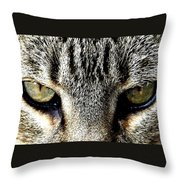 Me...dangerous...never. Throw Pillow
