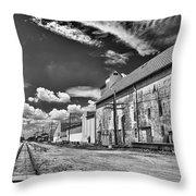 Medina Railyard 7323 Throw Pillow