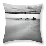 Meditating Sea Gull Throw Pillow by Dennis Dame