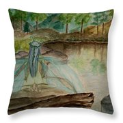 Meditation Throw Pillow by Carrie Viscome Skinner