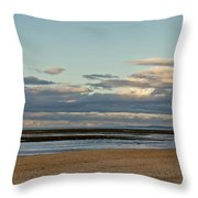 Meditation In The Coming Dusk. Throw Pillow