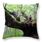 Meditation On Centenary Tree  Throw Pillow