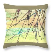 Meditations And Love Letters #15060 Throw Pillow
