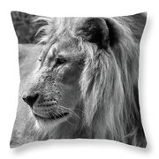 Meditative Lion In Black And White Throw Pillow
