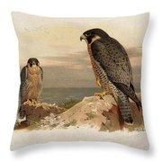 Mediterranean Peregrine By Thorburn Throw Pillow
