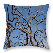Medusa Limbs Reaching For The Sky Throw Pillow