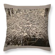 Medusa Revisited Throw Pillow
