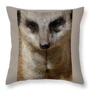 Meerkat Looking At You Throw Pillow