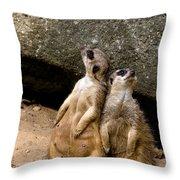 Meerkats Keeping An Eye Out Part 2 Throw Pillow
