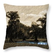 Meet Me By The Willows Throw Pillow