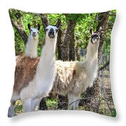 Meet My Friends Throw Pillow
