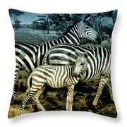 Meet The Zebras Throw Pillow