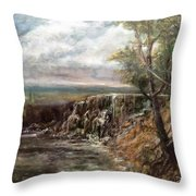 Meeting Of The Waters Throw Pillow