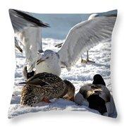 Meeting Time Throw Pillow