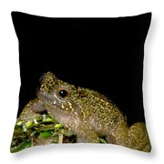 Mehu�n Green Frog Throw Pillow