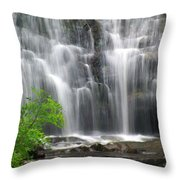 Meigs Falls 2 Throw Pillow