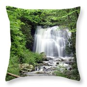 Meigs Falls Throw Pillow