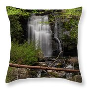 Meigs Falls One Throw Pillow