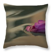 Melancholy - Discarded Rosebud Floating In A Fountain Throw Pillow