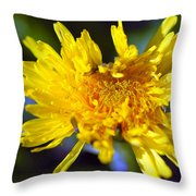 Mello Yello Throw Pillow