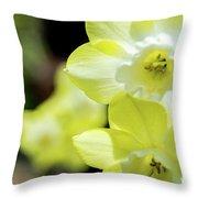 Mello Yellow Throw Pillow