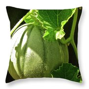 Mellow Mellon Throw Pillow