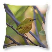 Mellow Yellow - American Warbler - Setophaga Petechia Throw Pillow