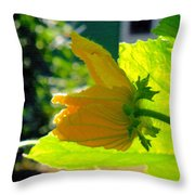 Melon's Flower 10 Throw Pillow