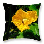 Melon's Flower 12 Throw Pillow