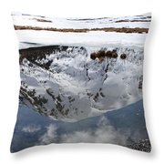 Melting View Throw Pillow