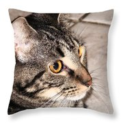 Melvin The Wondercat Throw Pillow
